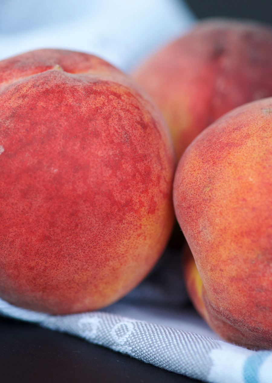 Close up of fuzzy Niagara peaches