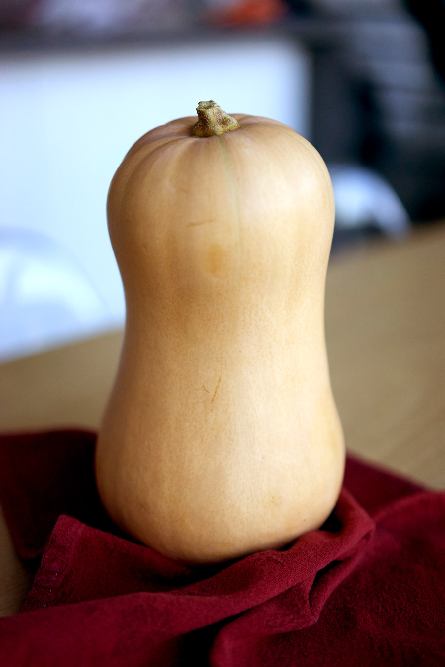 A beautiful, smooth and creamy coloured butternut squash on a deep red cloth