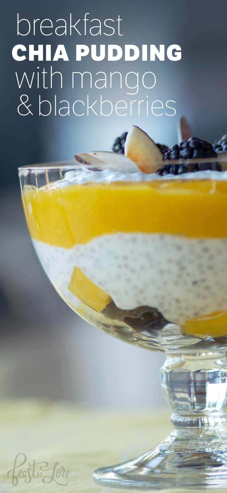 Chia Pudding with Mango Sauce and Blackberries